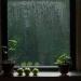 アウトドア派にはつらい梅雨の時期、楽しく過ごすには?